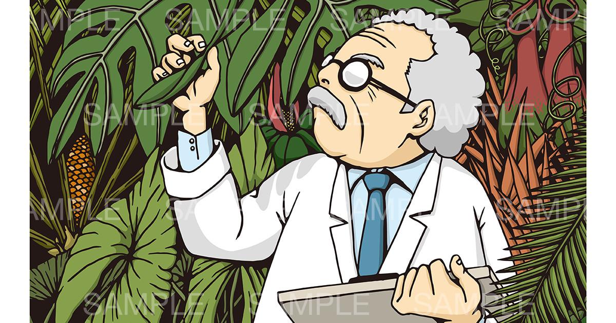 植物学のイメージイラスト